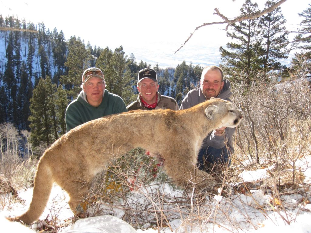 Colorado Hunting Outfitters