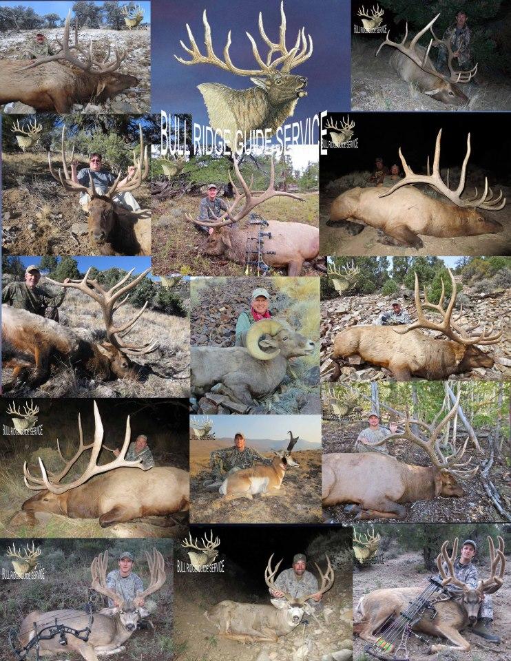Nevada Hunting Guides