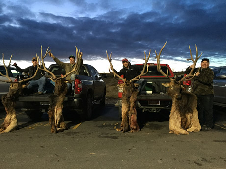 Top Nevada Hunting Guides